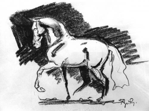 etude cheval